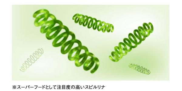 MAX GPC αの成分