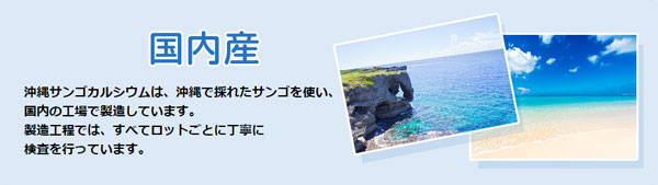 沖縄サンゴカルシウムの特徴